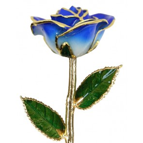 2-Tone Dark Blue Rose Trimmed in 24k Gold (September) by 24K Rose