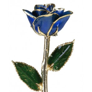 Memphis  Blue 24k Gold Rose by 24K Rose