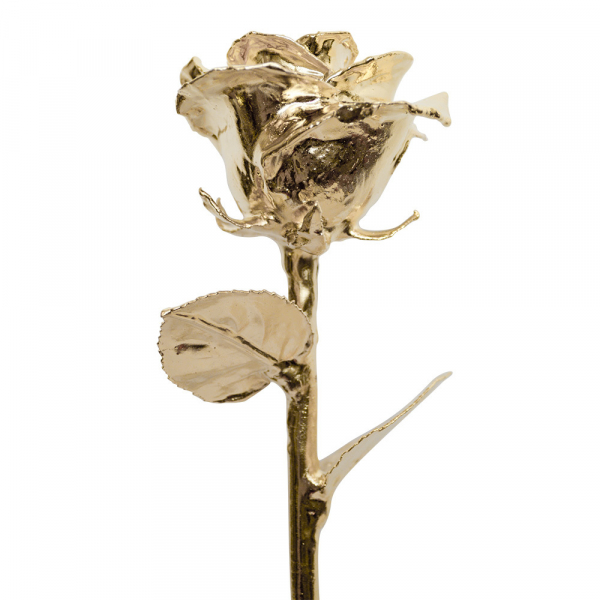 24K Diana Gold Dipped Rose by 24K Rose