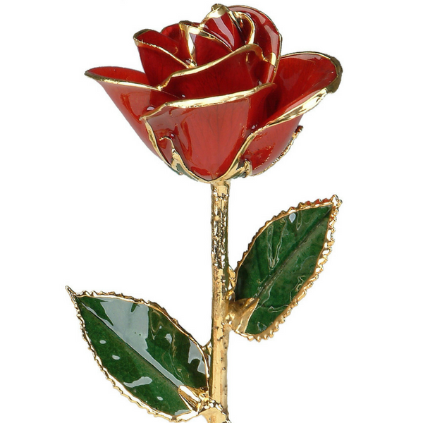 Red 24K Gold Rose by 24K Rose